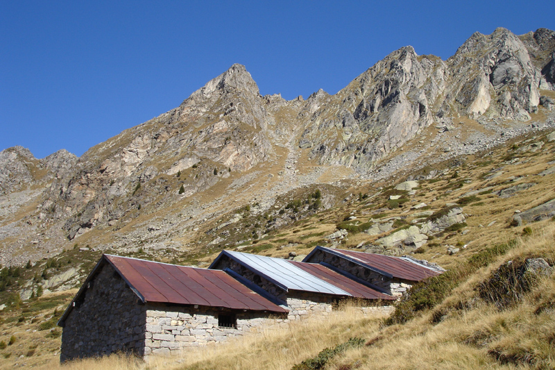 Foto Alp de Sambrog